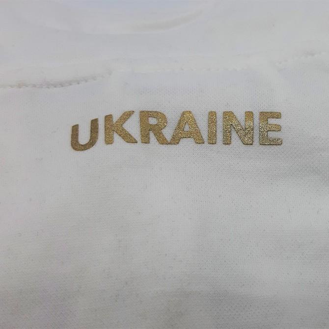 Спортивный костюм ФФ Украины FFU312011,18